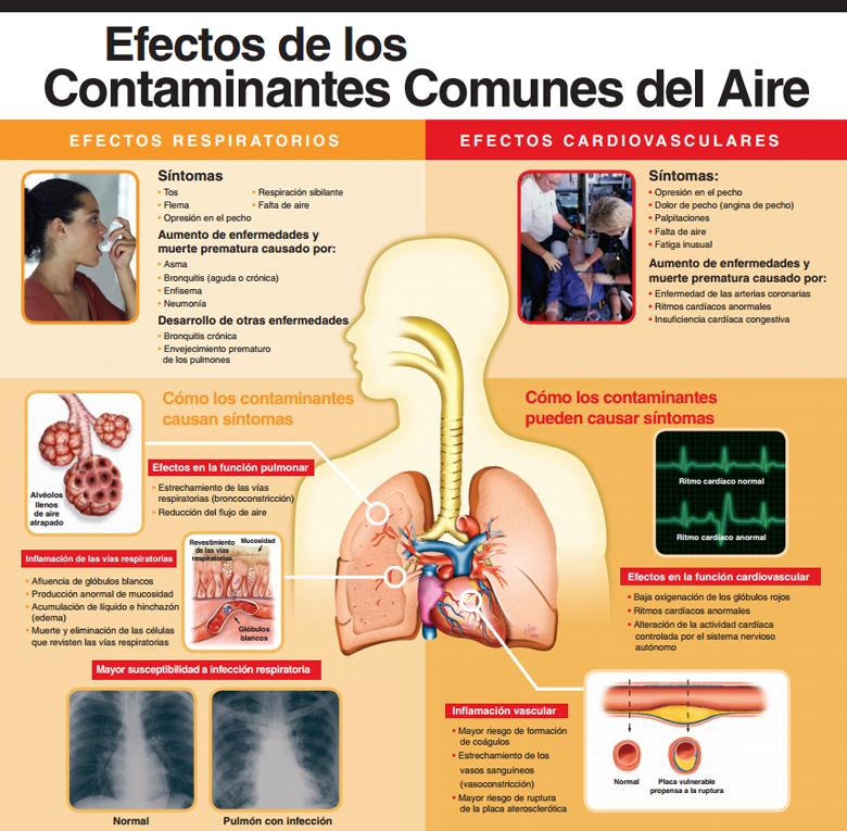 (Efectos de los contaminantes del aire en las personas.)