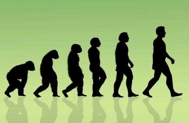 (Teoría Evolucionista. Ilustración)